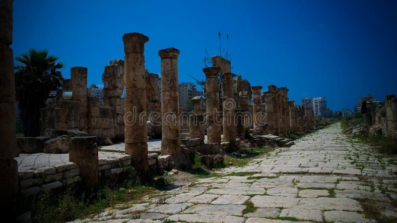 Остатки старых столбцов на месте раскопк мины Al в покрышке, Ливане стоковая фотография rf