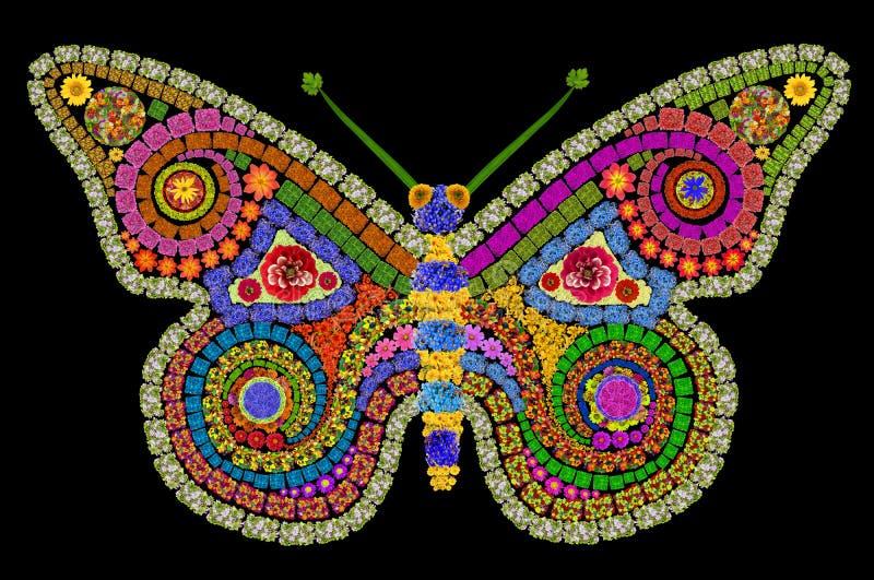 остальные ночи сумеречницы бабочки стоковые изображения rf