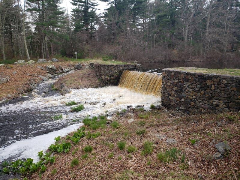 Остервенение водопада стоковые изображения rf