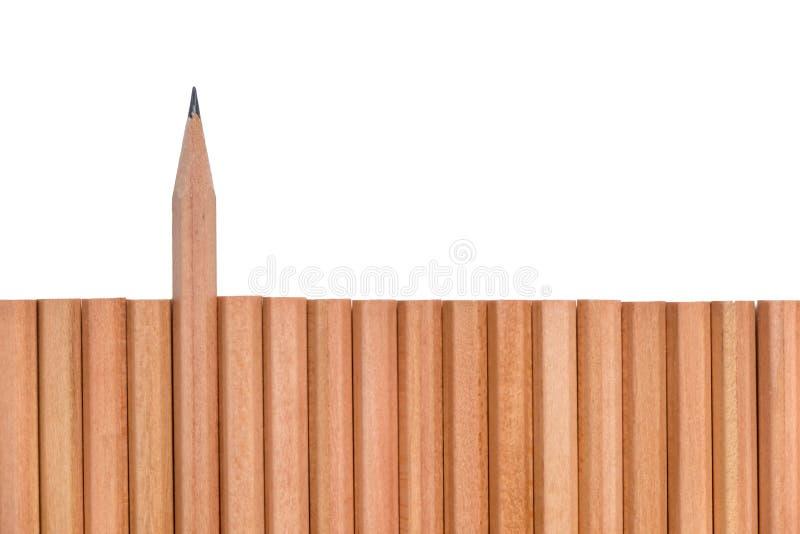 Острая стойка карандаша из других карандашей стоковые изображения