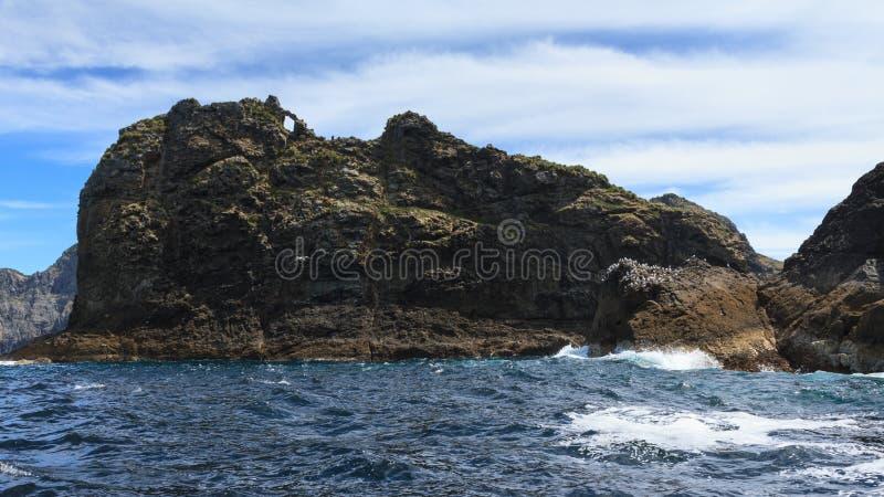 острова Новая Зеландия залива Крошечный остров Tiheru стоковые изображения rf