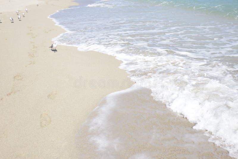 острова пляжа солнечные стоковые фотографии rf