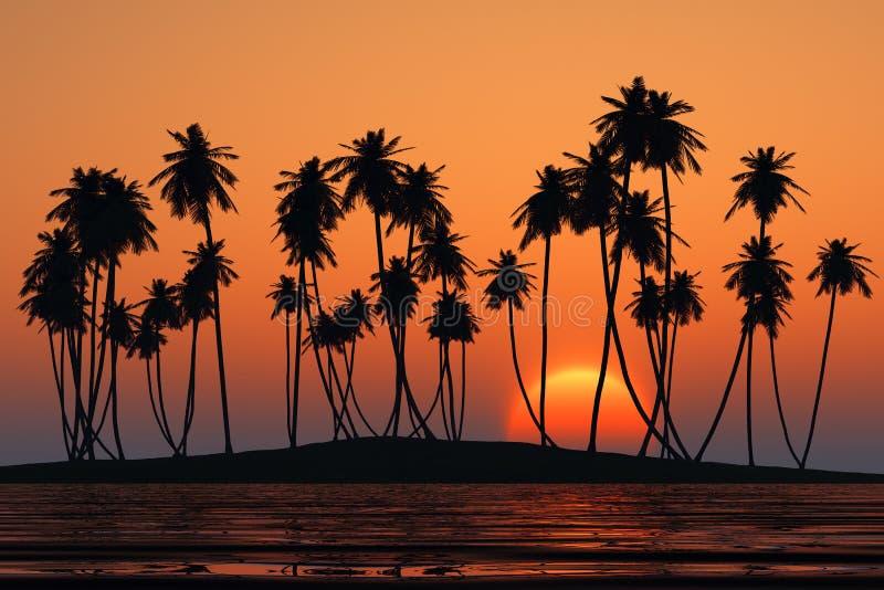 Остров ладоней кокоса иллюстрация штока