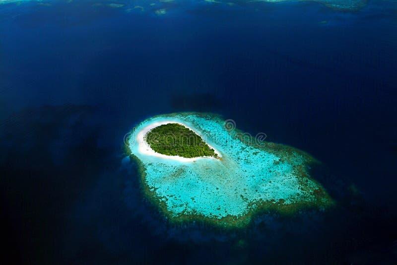 Остров взгляда Мальдивов ареального стоковые фото
