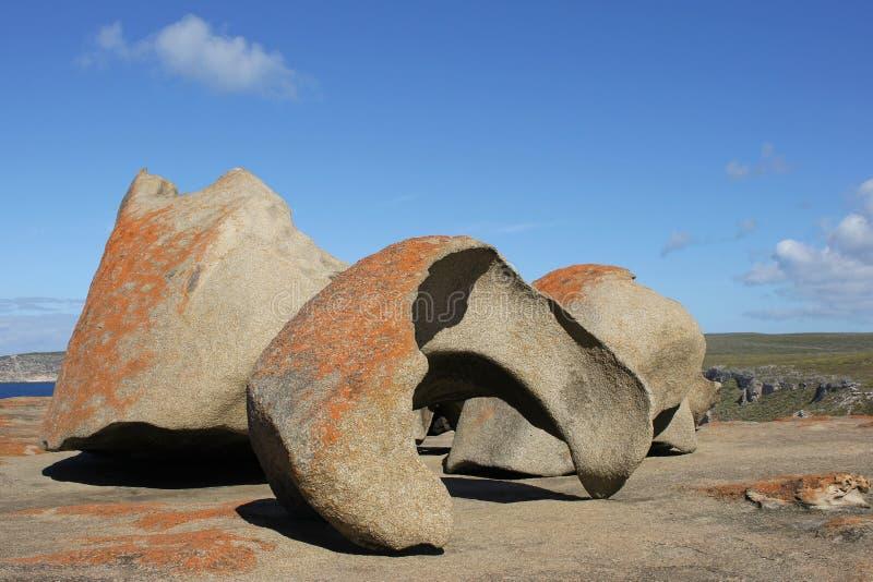 Остров кенгуруа, Австралия стоковая фотография rf