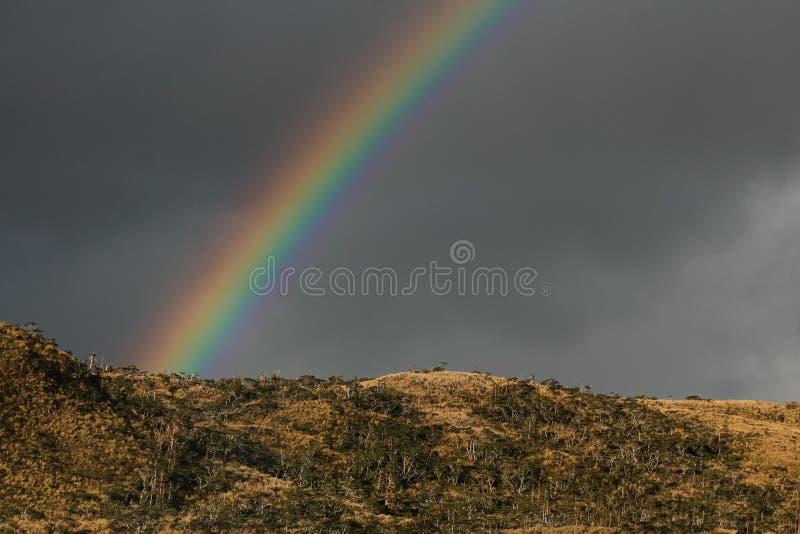 Остров Клэранса радуг стоковое изображение