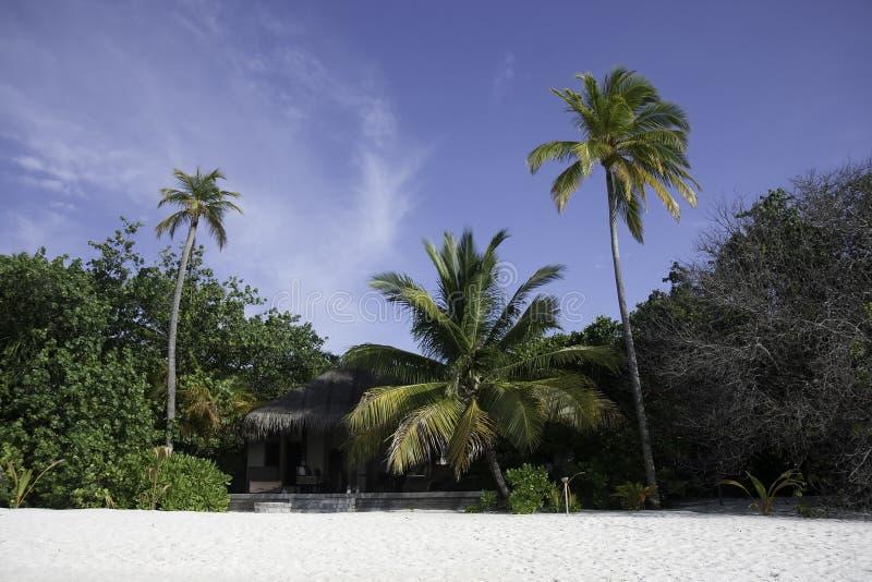 остров Мальдивы бунгала пляжа тропические стоковое изображение