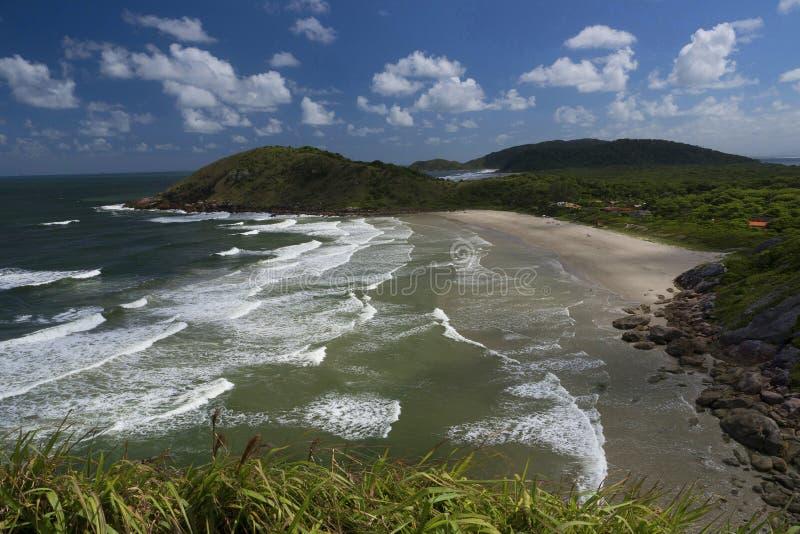 Остров меда стоковые изображения