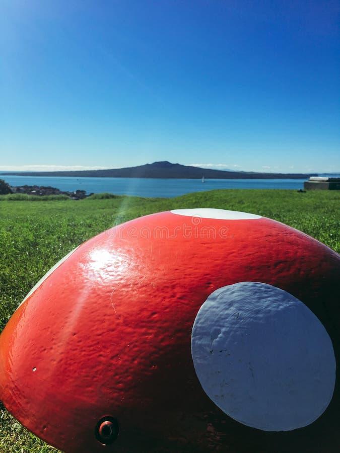 Остров Новая Зеландия Rangitoto стоковое изображение rf