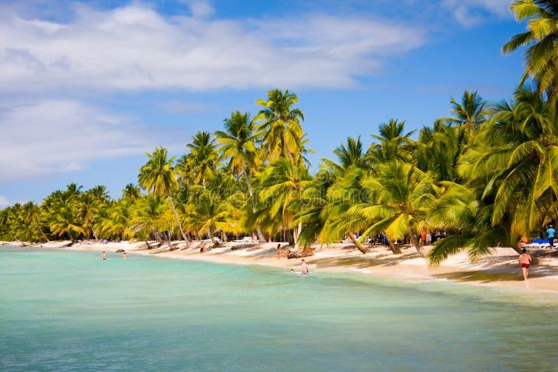 остров пляжа стоковые фотографии rf