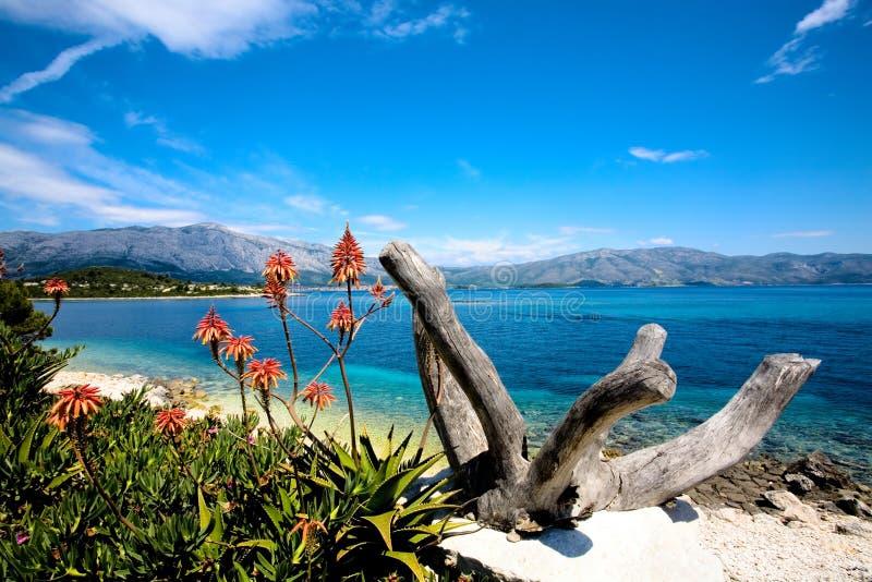 остров 2 красоток стоковые фотографии rf
