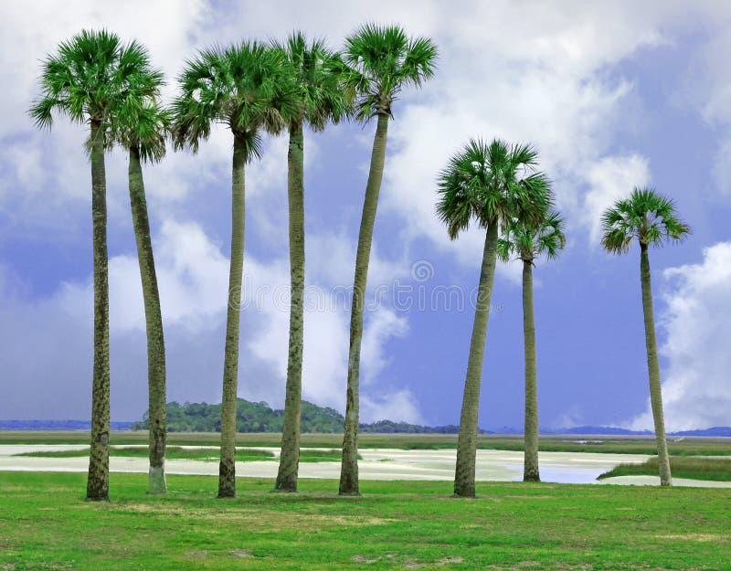 Остров Amelia, Флорида стоковая фотография