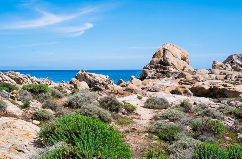 Остров Asinara в Сардинии, Италии стоковое фото rf