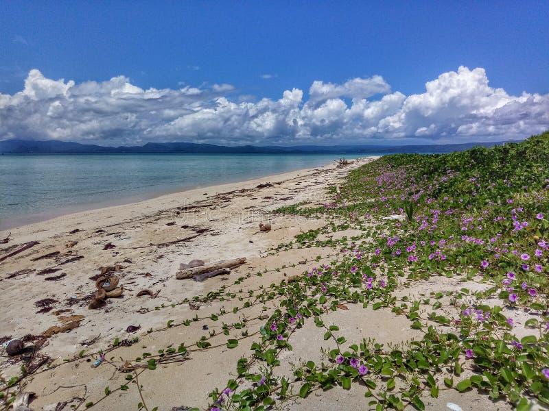 Остров Cagbalete стоковая фотография rf