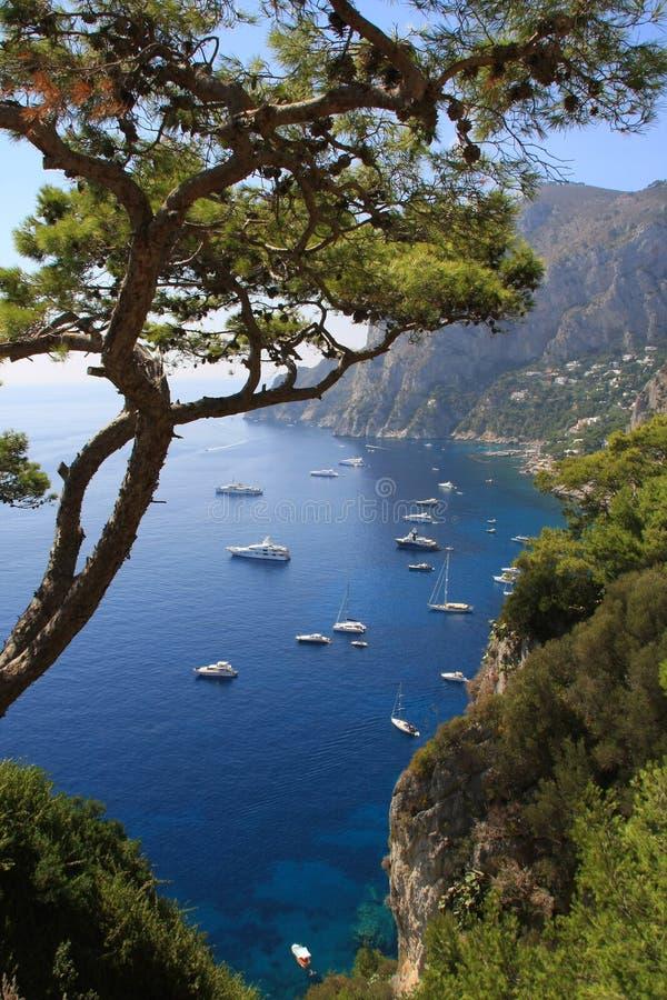 остров capri стоковое изображение rf