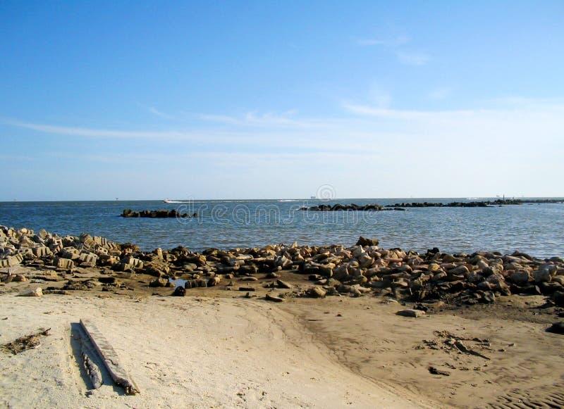 остров dauphin стоковые фотографии rf