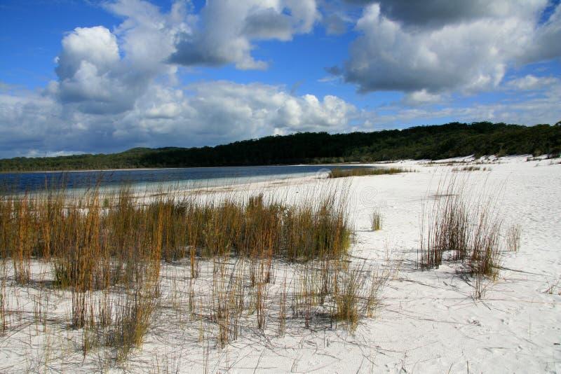 остров fraser пляжа тропический стоковое изображение