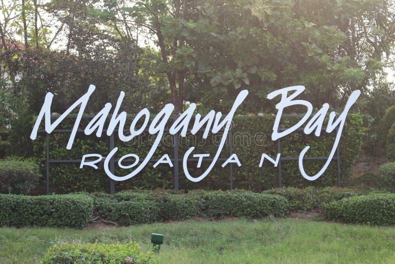 Остров Isla Roatan залива Mahogany стоковые изображения rf