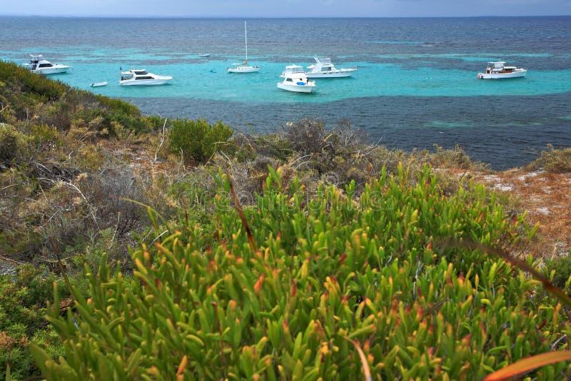 Остров Rottnest стоковое фото rf