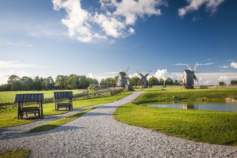 Остров Saaremaa, естонија стоковая фотография