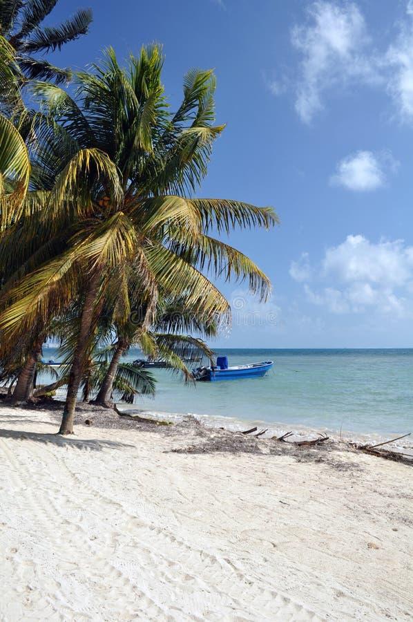 Остров San Andres, карибское море, Колумбия стоковое фото rf