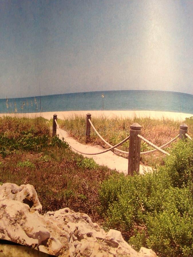 Остров Sanibel стоковые изображения rf