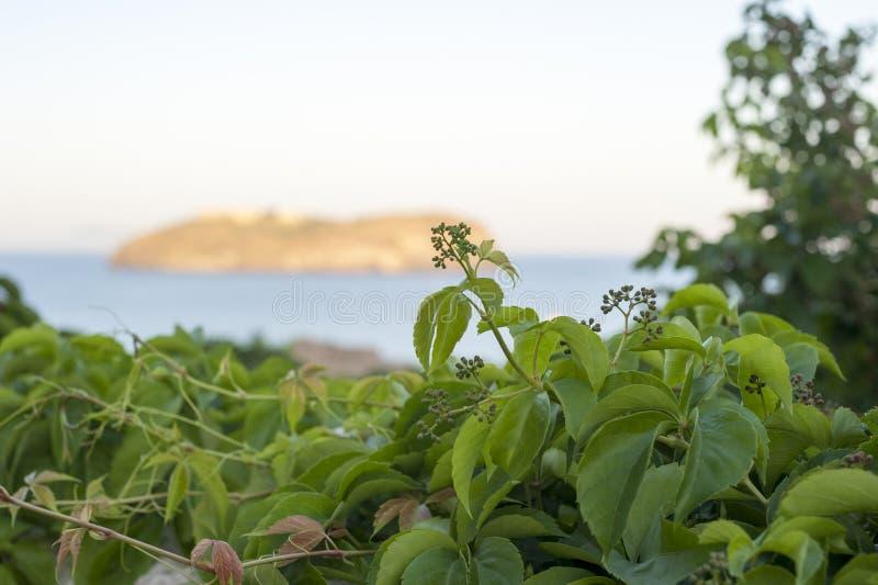 Остров Santo stefano стоковая фотография rf