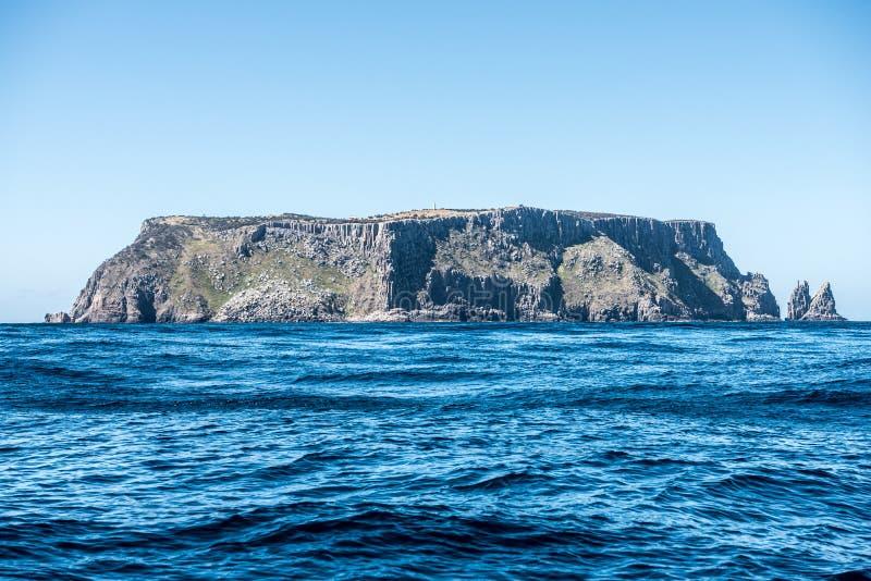 Остров Tasman, Австралия стоковая фотография