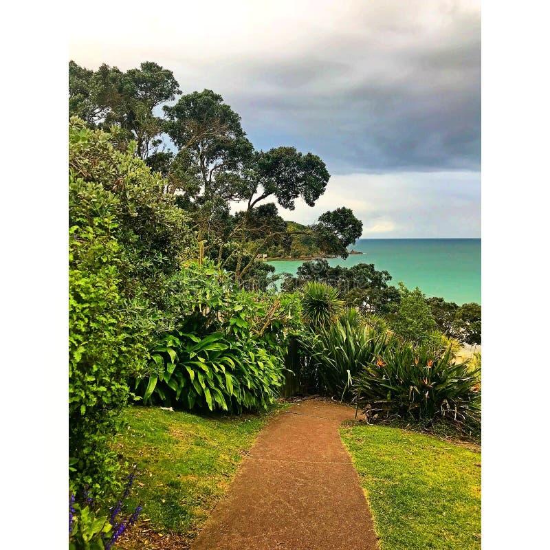 Остров Waiheke стоковое фото rf