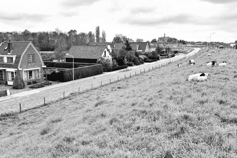 Осыпь на защитной плотине в Голландии стоковая фотография