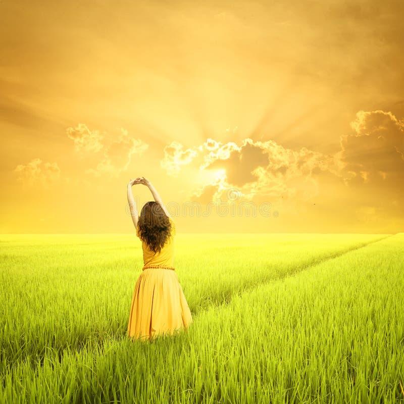 Ослабьте женщину в зеленых полях и заходе солнца риса в утре стоковые изображения rf