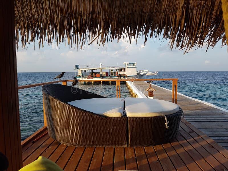 Ослаблять в Мальдивах стоковое фото rf