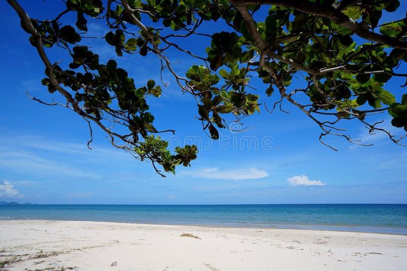 Ослаблять на белом пляже стоковые фото