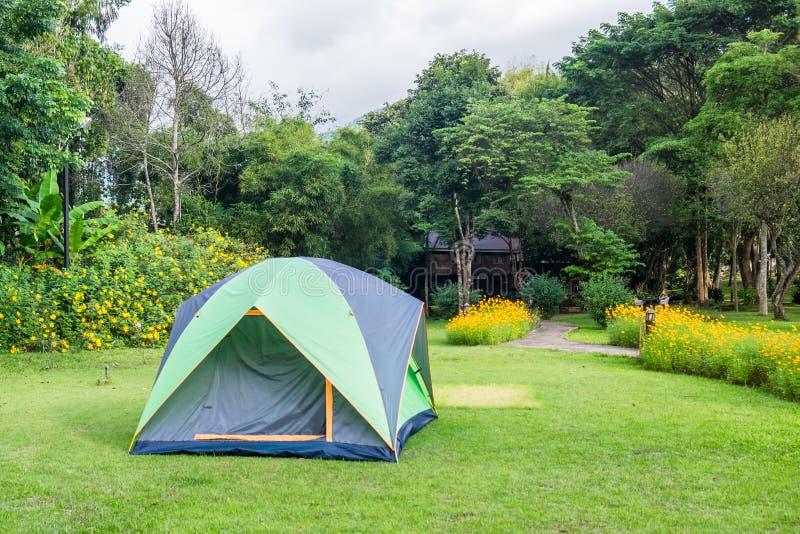 Ослаблять шатра располагаясь лагерем на задворк лужайки стоковые изображения rf