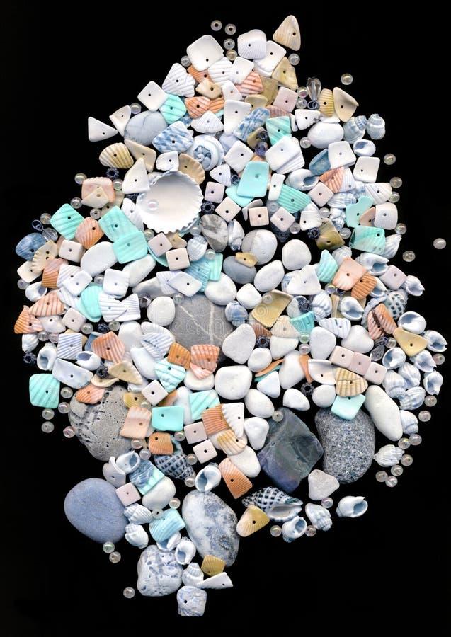 отбортовывает красивейшие seashells стоковая фотография rf