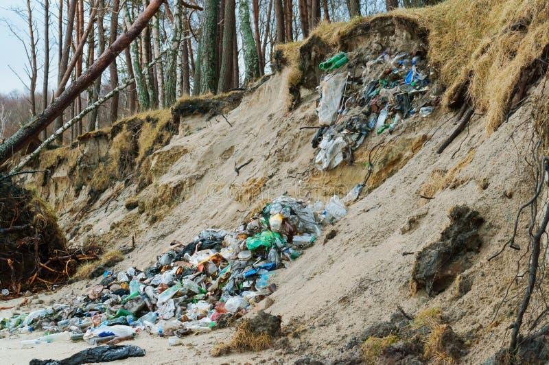 Отброс вышел человеком в лес, пластиковыми ненужными стеклянными бутылками в природе стоковые изображения rf
