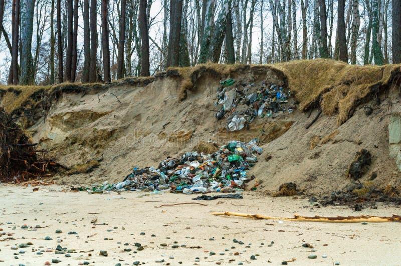 Отброс вышел человеком в лес, пластиковыми ненужными стеклянными бутылками в природе стоковая фотография rf