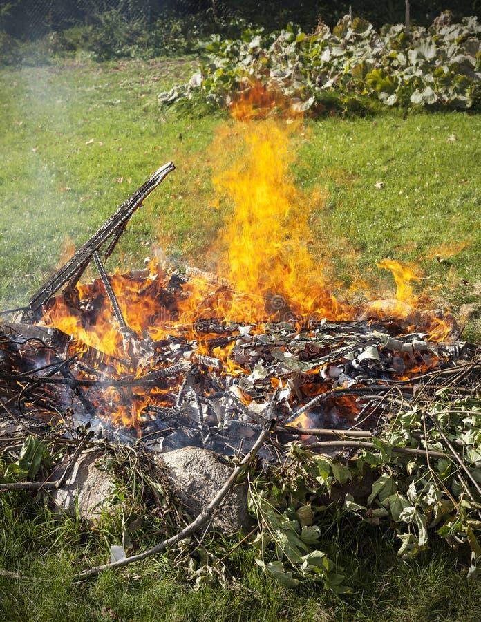 Отброс в огне, садовничает противозаконная выжимк ожога стоковые фотографии rf