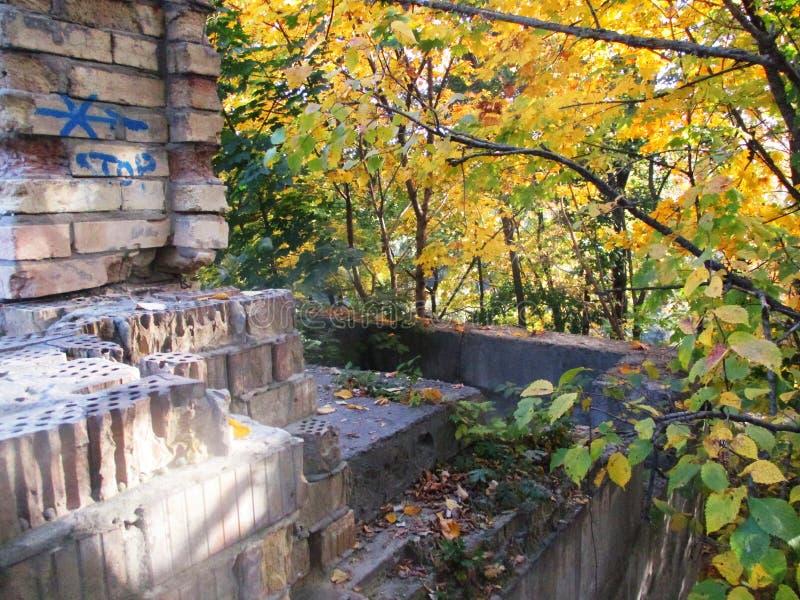 Отброшенный дом, осенние листья стоковые изображения