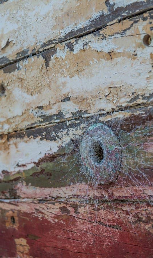 Отверстие паука стоковые изображения