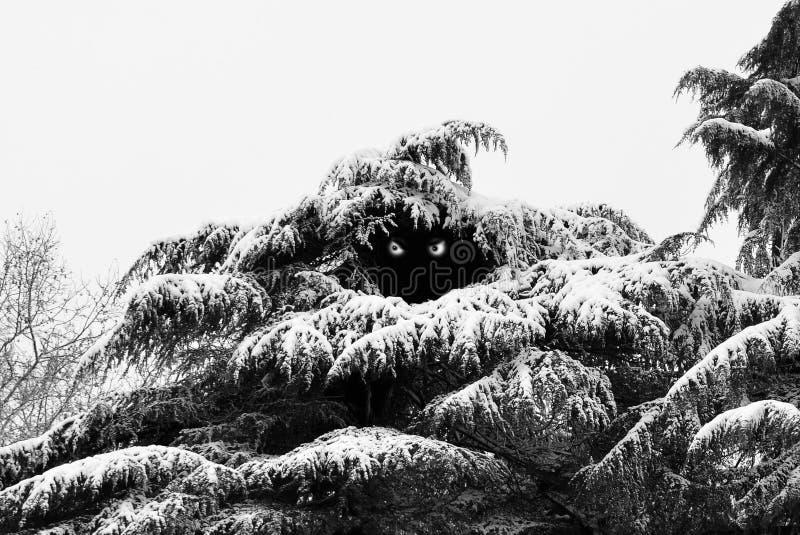 Отверстие снежного человека стоковая фотография rf