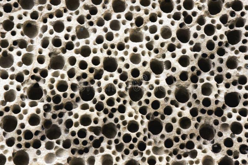 Отверстия в песчанике стоковое изображение rf