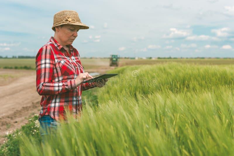 Ответственное умное сельское хозяйство, используя современную технологию в agricultur стоковое фото rf