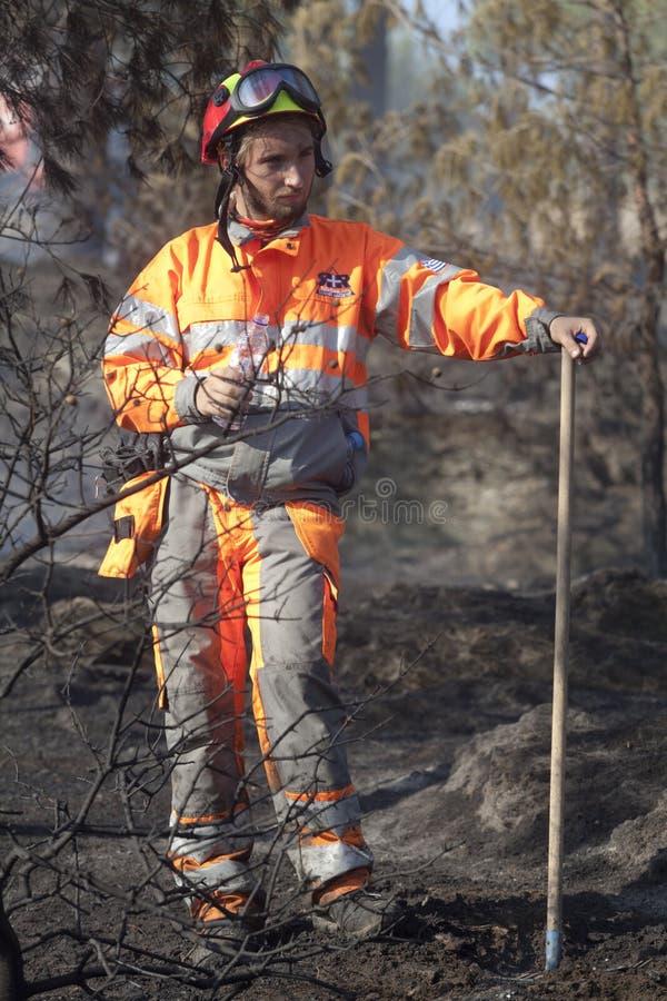 отдел тушит пущу пожара стоковые фотографии rf