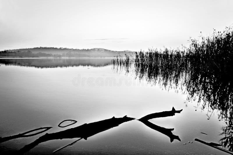 Отдохновение природы стоковое фото