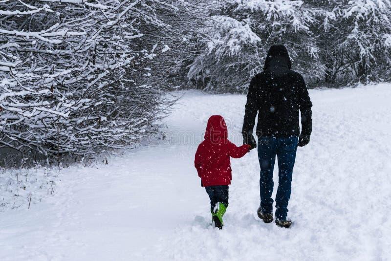 Отец идет с его маленькой дочерью в Forest Park во время сильного снегопада стоковое фото rf