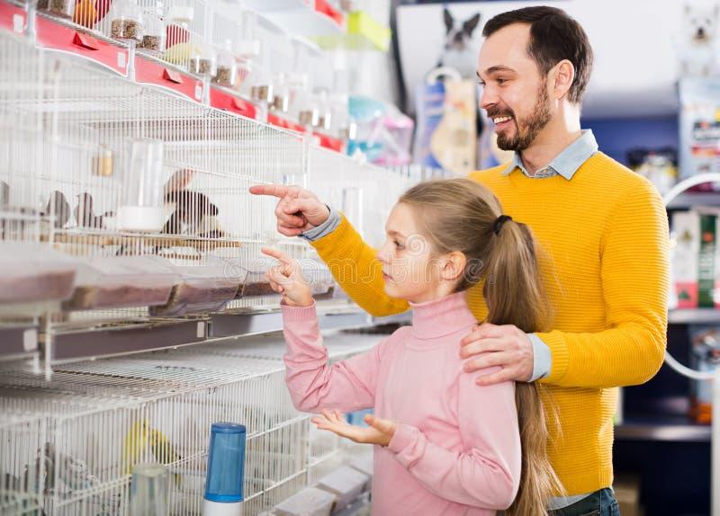 Отец и дочь рассматривая различную птицу стоковые фото