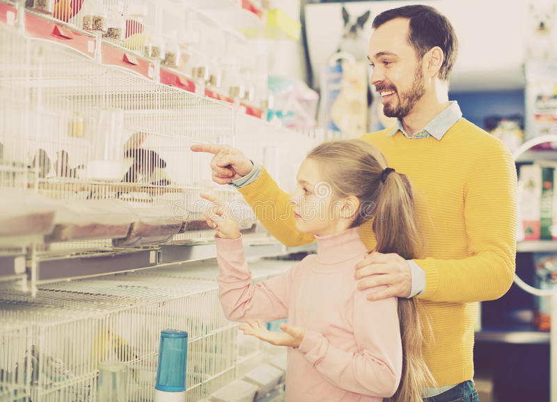 Отец и дочь рассматривая различную птицу стоковое фото