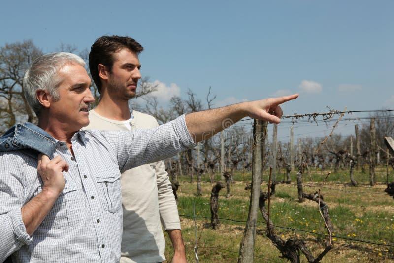 Отец и сынок в сельской местности стоковое изображение rf
