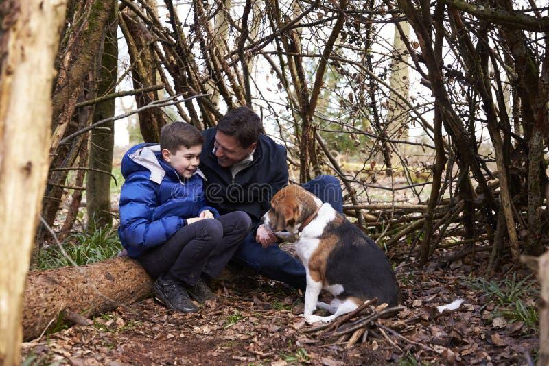 Отец и сын говоря, под укрытием ветвей с собакой стоковые изображения